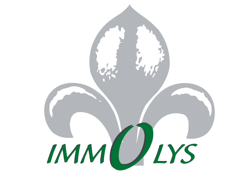 FINANCIERE IMMOLYS